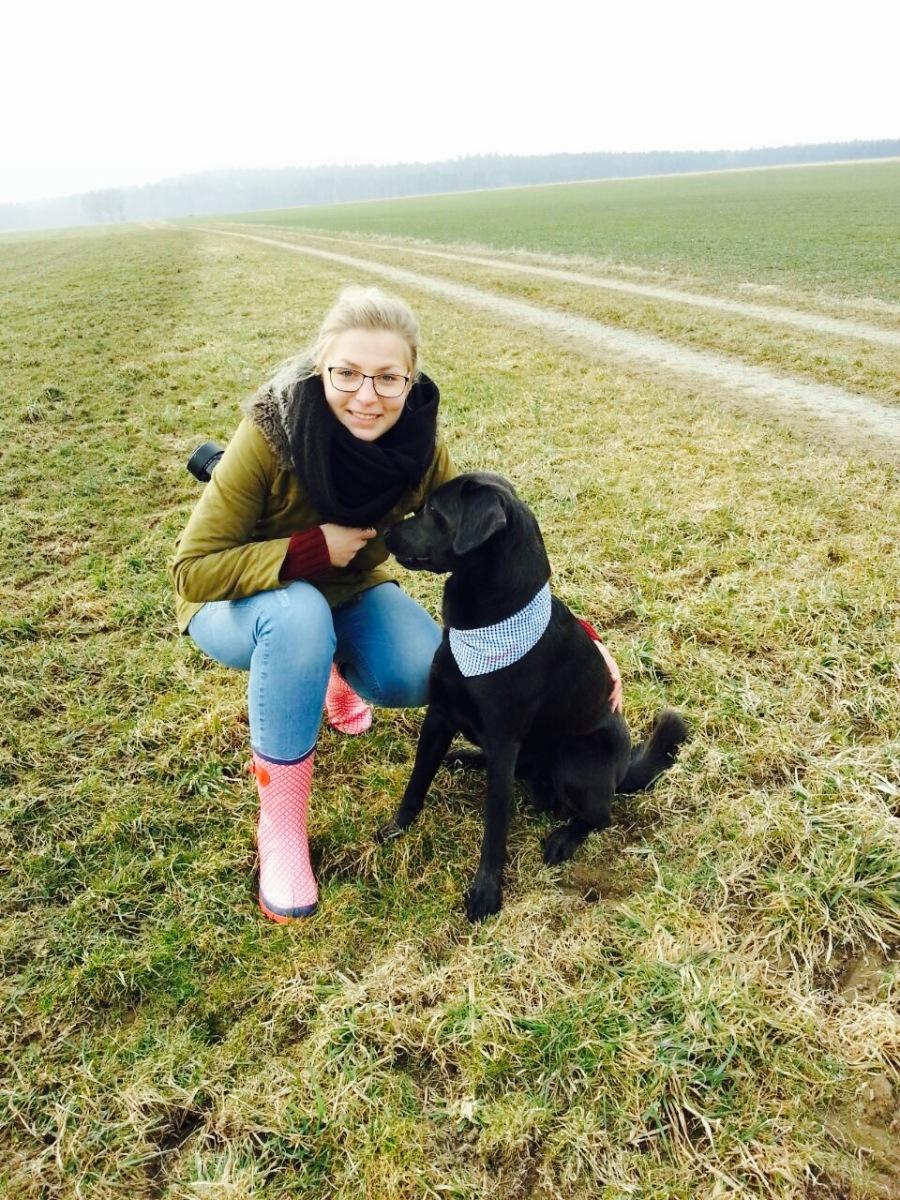 Nähanleitung: Hundehalstuch